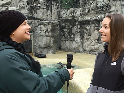 Video interviews with zoo visitors