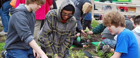 Planting at Brookfield Zoo